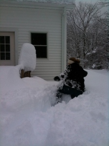 ...I had to climb through the snow to find the shovel. Which btw a certain Russian had left under the porch (and four feet of snow.)